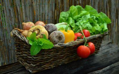 Каждому овощу свое место
